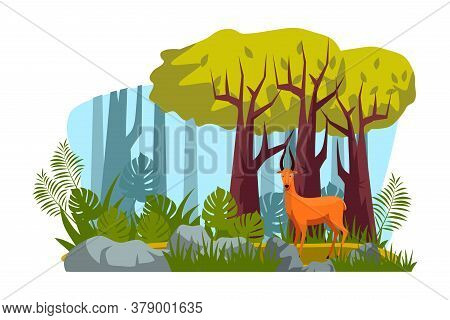 Cute Roe Deer Wild Animal Character With Antlers Standing In Tropical Forest. Meadow With Tree, Gree