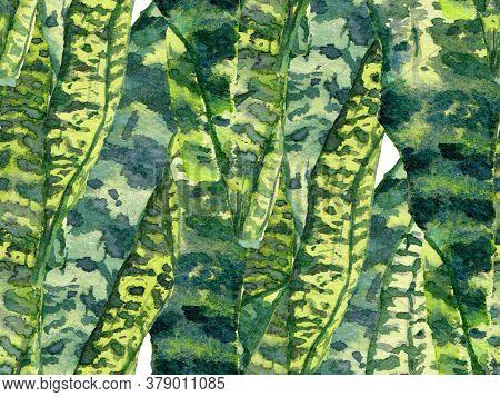 Green And Aqua Menthe Summer Floral Background. Botanical Forest Illustration. Exotic Swimwear Desig