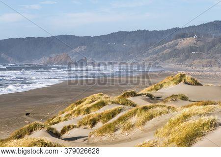 Grassy Sand Dunes, Pistol River Oregon