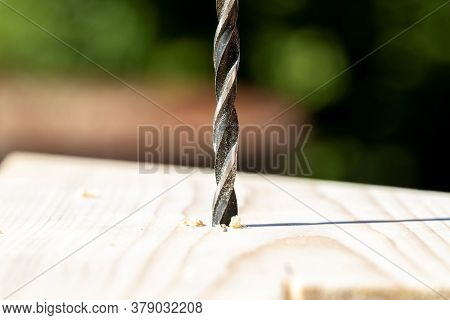 A Closeup Portrait Of A Drill Drilling A Hole Into A Wooden Plank. The Wood Drill Bit Is Full Of Woo
