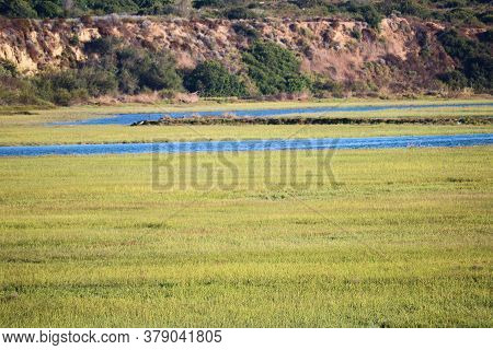 Lush Green Tallgrass Besides A River Surrounded By Bluffs On An Estuary Taken At Newport Back Bay In