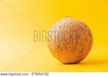 Happy Coconuts Day Concept, Whole Coconut, Studio Shot Isolated On Yellow Background, Tropical Fruit