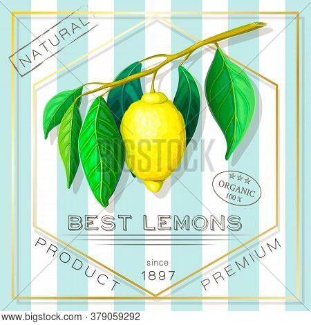 Vintage Advertising Poster Of Exotic Citrus Fruits. Vector Label With Yellow Ripe Lemon Branch In Re
