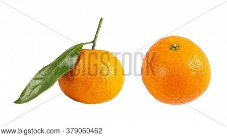 Mandarin With Green Branch Isolated On White Background. Juicy And Fresh Mandarine Isolated Over Whi