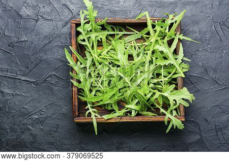 Fresh Arugula Or Rucola Leaves