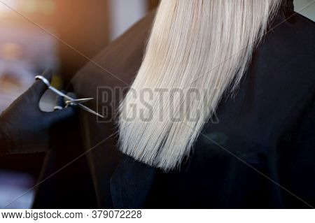 A Hairdresser In Rubber Gloves Holds A Pair Of Scissors And A Comb. Woman Getting A New Haircut. Fem