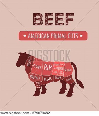 Vector Illustration Of American Primal Beef Meat Cuts Diagram, Us Scheme For Butcher Shop, Color Ind