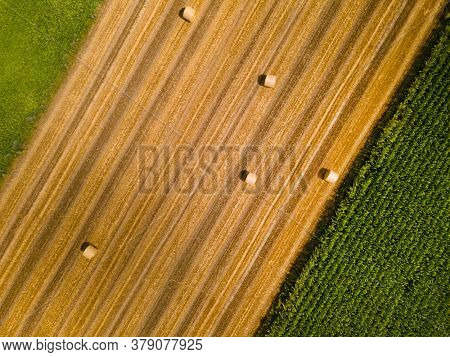 Aerial top view of agriculture field