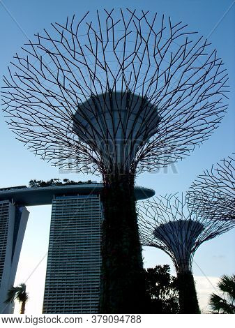 Singapore, March 6, 2016: Artificial Trees Of The Gardens Of The Bay With The Hotel Marina Bay Sands
