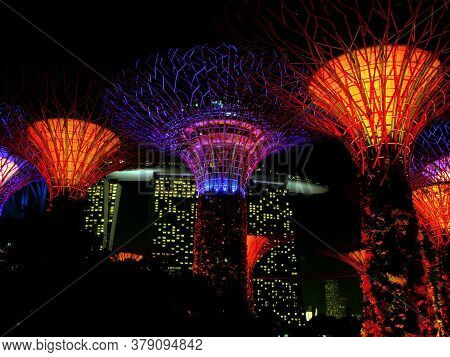 Singapore, March 6, 2016: Night View Of The Artificial Trees Of The Gardens Of The Bay With Their Sp