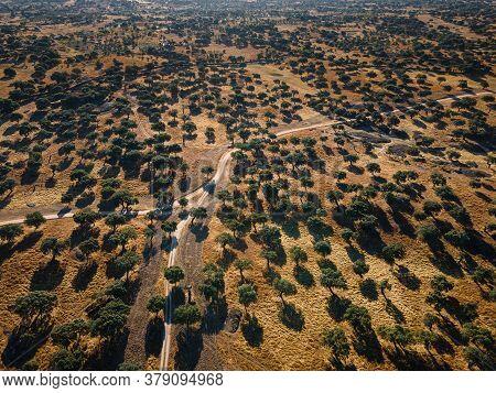 Landscape In Dehesa De La Luz. Extremadura. Spain.