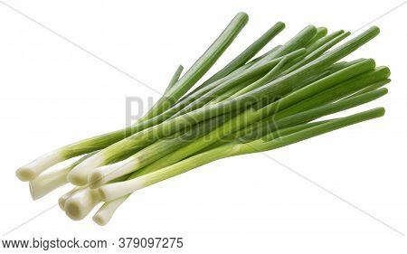 Green Onion, Fresh Chives Isolated On White Background