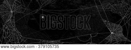 Spider Webs On Black Wall - Halloween Banner With Spider On Dark Background.