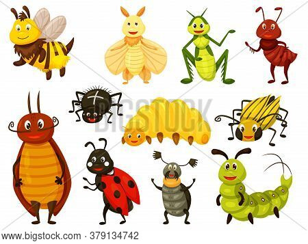 Cartoon Beetle. Kawai Bug Isolated Set On White. Cute Wasp, Bee, Grasshopper, Fly, Ant, Caterpillar,