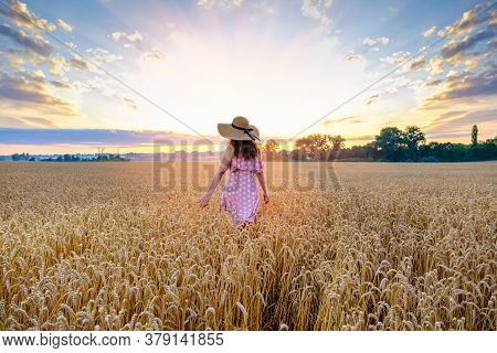 Young Woman In A Straw Hat On Her Head Walks Across A Wheat Field With Her Back To The Camera On Sun