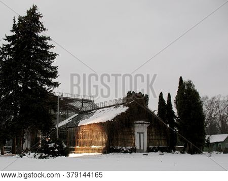 Greenhouse Girlish Overgrown Vines And Surrounded By Pine Trees And Shrubs In Winter