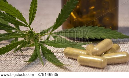 Alternative Medicine, Medicinal Cannabis Leaves And Powder Capsules