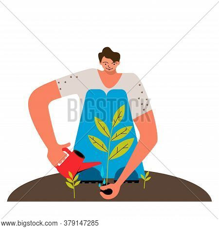 Man Planting A Tree. A Man Watering The Growing Plant. Planting Sapling. Ecology Concept.