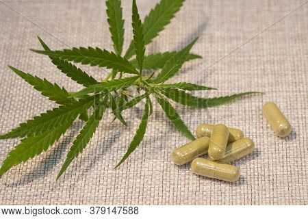 Alternative Medicine, Medicinal Cannabis Leaves And Homeopathy Medicines