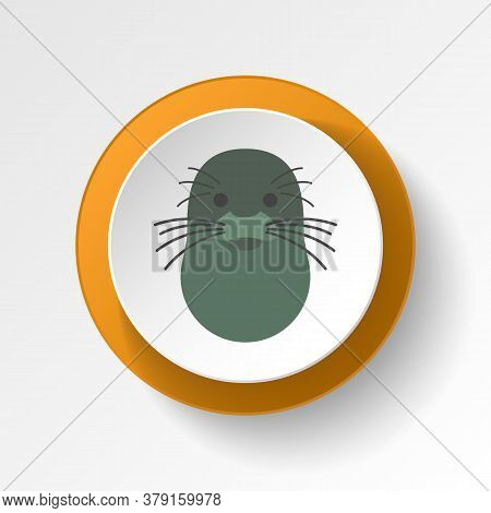 Seal Color Icon. Elements Of Winter Wonderland Multi Colored Icons. Premium Quality Graphic Design I