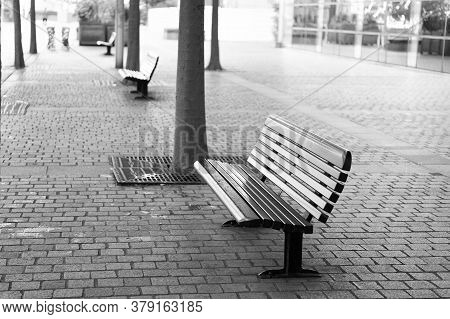 Improvement Of Public Space. Bus Station Place For Waiting. Urban Bench Or Seat. City Bench With Bac