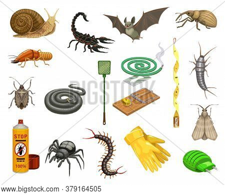 Pest Insects, Bugs And Animals Cartoon Set Of Pest Control Vector Design. Insecticide Spray, Spider,