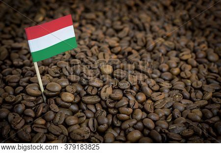 Hungary Flag Sticking In Roasted Coffee Beans. The Concept Of Export And Import Of Coffee