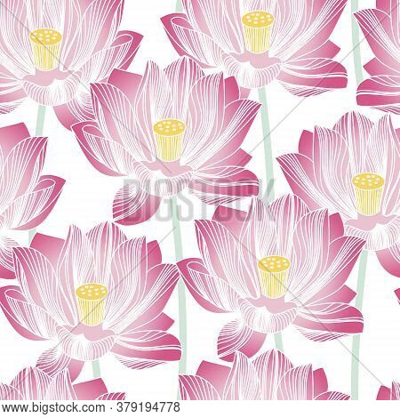 Seamless Pattern With Water Lilies. Background With Stylized Lotuses. Blooming Pink Flowers. Seamles