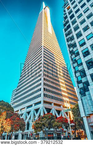 View Of The City Center,tower Skyscraper Transamerica, Downtown Of San Francisco.