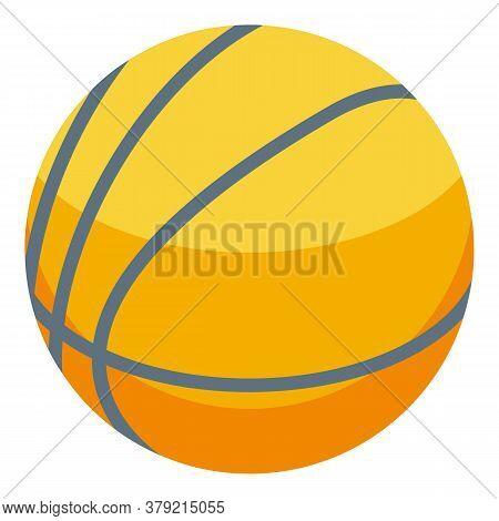 Inclusive Education Basketball Ball Icon. Isometric Of Inclusive Education Basketball Ball Vector Ic