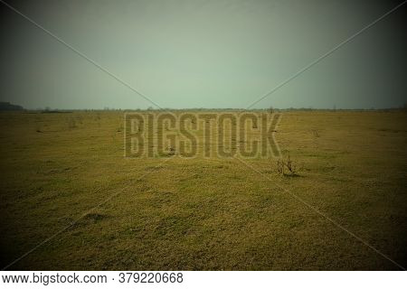 Steppe Plain On A Cold Evening. Beautiful Sky Over The Field. Landscape. Vignette.