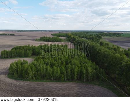 Green Grove Surrounded By Plowed Fields, Aerial View. Beautiful Landscape.