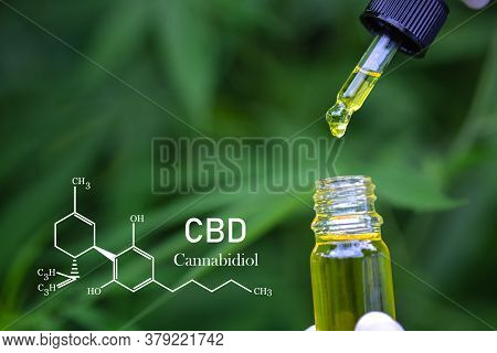 Cbd Elements In Cannabis, Pipette With Hemp Oil On Blurred Background. Cannabis Oil Against Marijuan