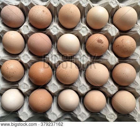 A Tray Of 20 Fresh Farm Eggs Under Natural Light.