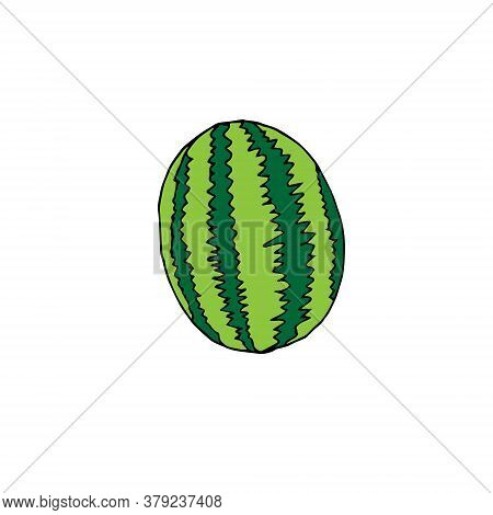 Vector Hand Drawn Doodle Sketch Colored Watermelon Isolated On White Background