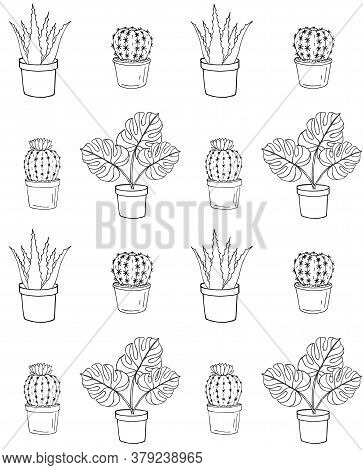 Vector Seamless Pattern Of Hand Drawn Doodle Sketch Monstera Plant And Cactus In Pots Isolated On Wh