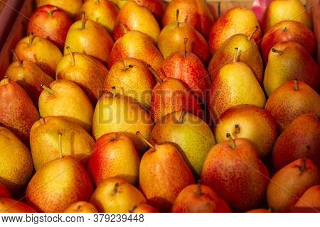 Ripe Pears In A Box Top View. Beautiful Red And Orange Pears Stacked In Rows. The Counter With Fruit