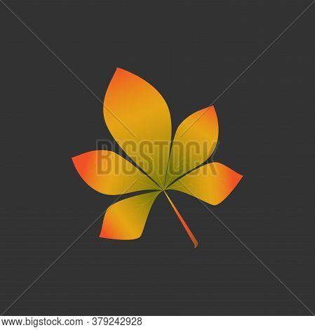 Chestnut Yellow Horse Chestnut Leaf On Black Background. Vector Isolated Illustration. Autumn Garden