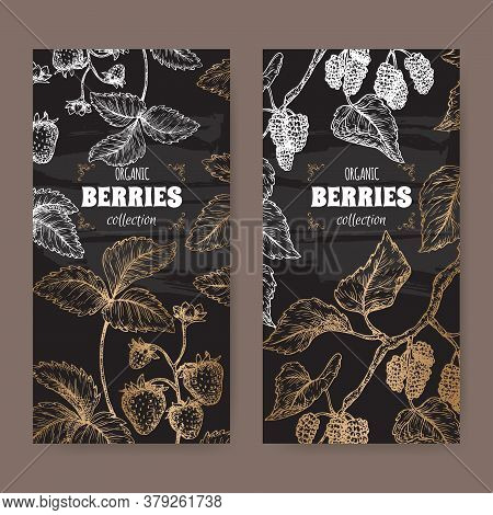Two Labels With Garden Strawberry Aka Fragaria Ananassa And Black Mulberry Aka Morus Branch Sketch O