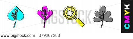 Set Leaf Or Leaves, Leaf Or Leaves, Magnifying Glass With Leaf And Leaf Or Leaves Icon. Vector