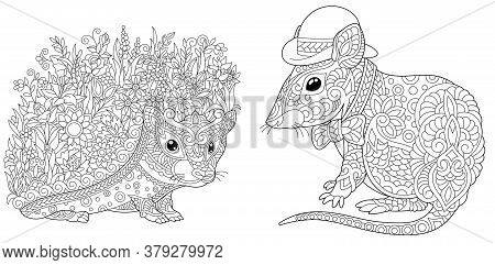 Coloring Pages. Hedgehog With Flowers And Cute Mouse In Hat. Line Art Design For Adult Colouring Boo