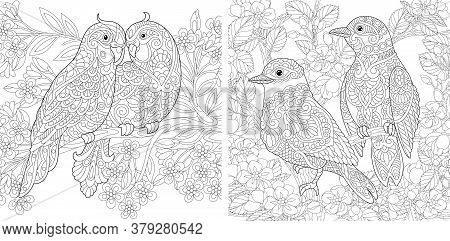 Coloring Pages. Couple Of Lovely Birds In Spring Flower Garden. Line Art Design For Adult Colouring