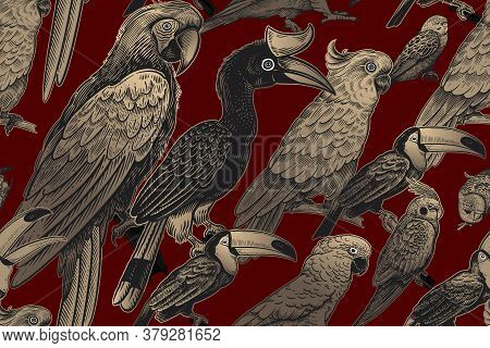 Luxury Tropical Pattern. Exotic Birds Parrots And Toucans. Gold Foil Print And Black On Red Backgrou