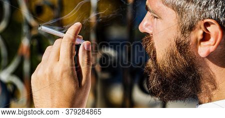 Bearded Man With Cigar. Beard Man And Mustache Smoke Cigar. Smoldering Cigars. Smoking Male, Smoke C