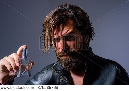 Bearded Man Holds Bottle Of Perfume. Man Perfume, Fragrance. Perfume Or Cologne Bottle And Perfumery
