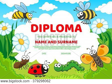 Kids Education Diploma With Cartoon Insects Cute Bees, Butterfly And Ladybug, Caterpillar And Ant On