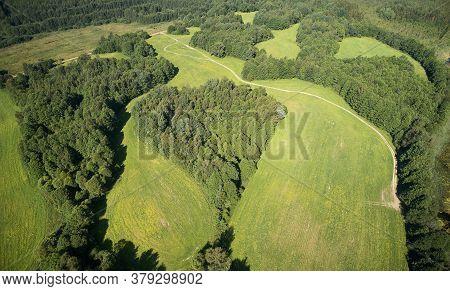 Heart Shape Forest In Green Field