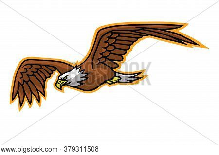 Eagle Falcon Flying Mascot Logo Mascot Design Vector