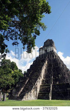 Tempel der großen Jaguars in tikal