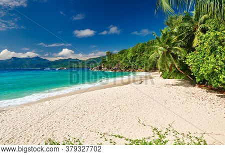 Beautiful beach Anse Soleil with palm tree at Seychelles, Mahe